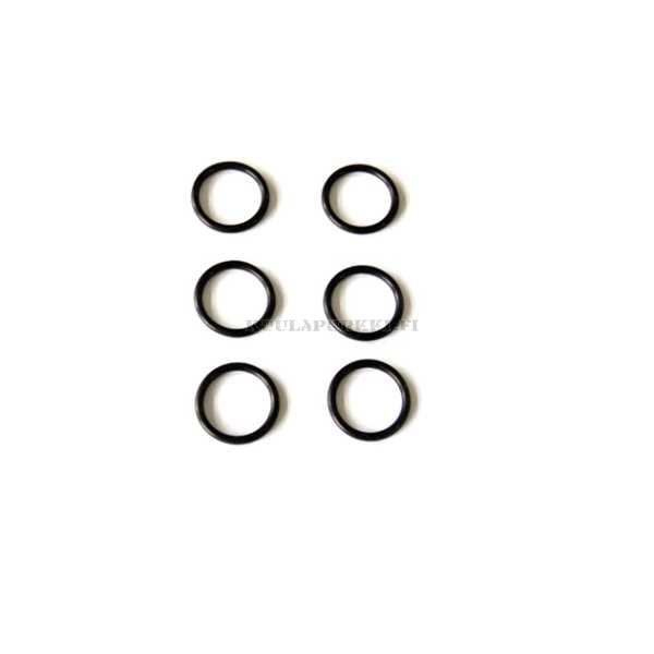 SHS O ring of piston head